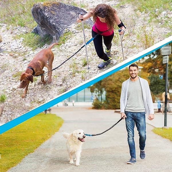 Hunde-Joggingleine
