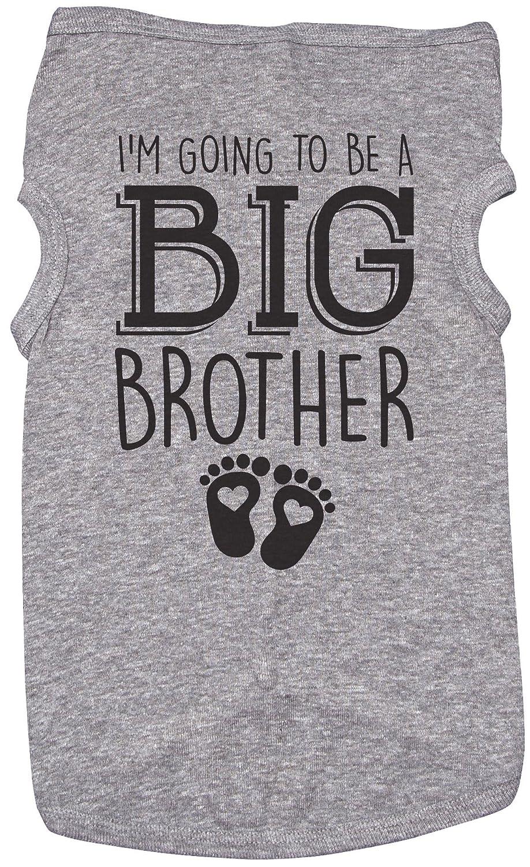 GREY Medium GREY Medium Big Bredher Shirt for Dogs I'm Going to BE A Big Bredher Puppy Shirt (Medium, Grey)