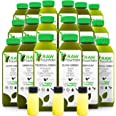 Raw Fountain 5 Day Green Juice Cleanse, All Natural Raw, Vegan Detox, Cold Pressed Juices, 30 Bottles 16oz, 5 Ginger Shots