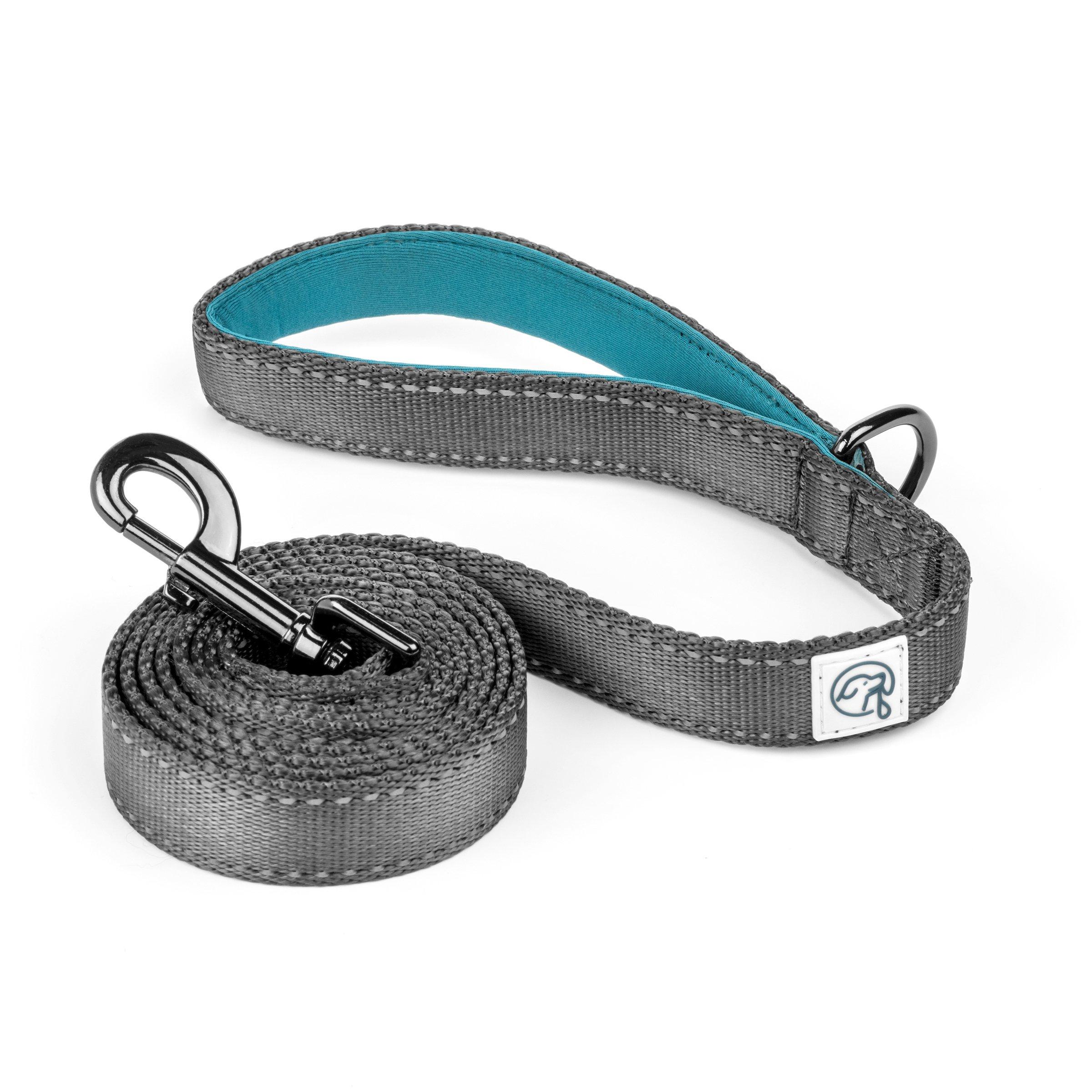 Embark Explorer Pet/Dog Leash with Soft Padded Handle - 5 Foot Length (Teal Blue)