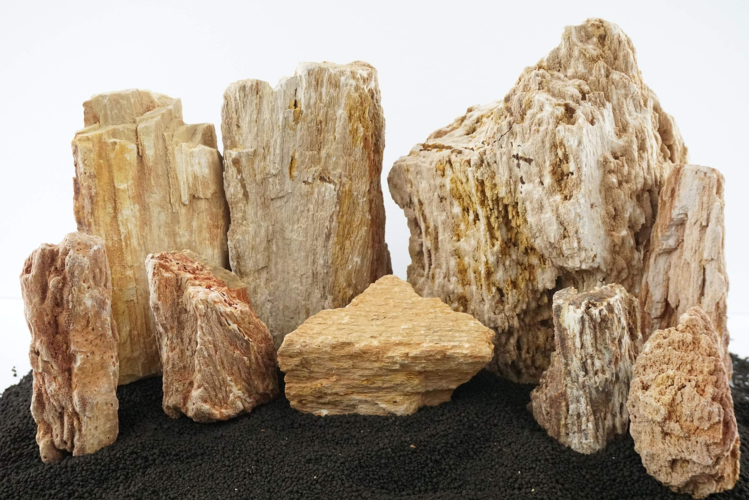 Lifegard Aquatics - Burma Petrified Stone 25 Gallon Aquarium Rock Kit by Lifegard Aquatics