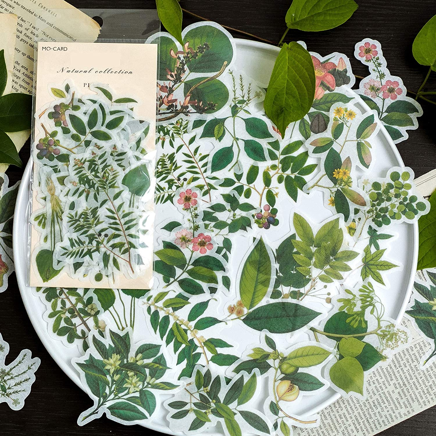 Green Plants Style Stickers Pack 60 Pcs Foliage Stickers Botanical Stickers Decals for Laptop Bumper Helmet Ipad Car Luggage Water Bottle