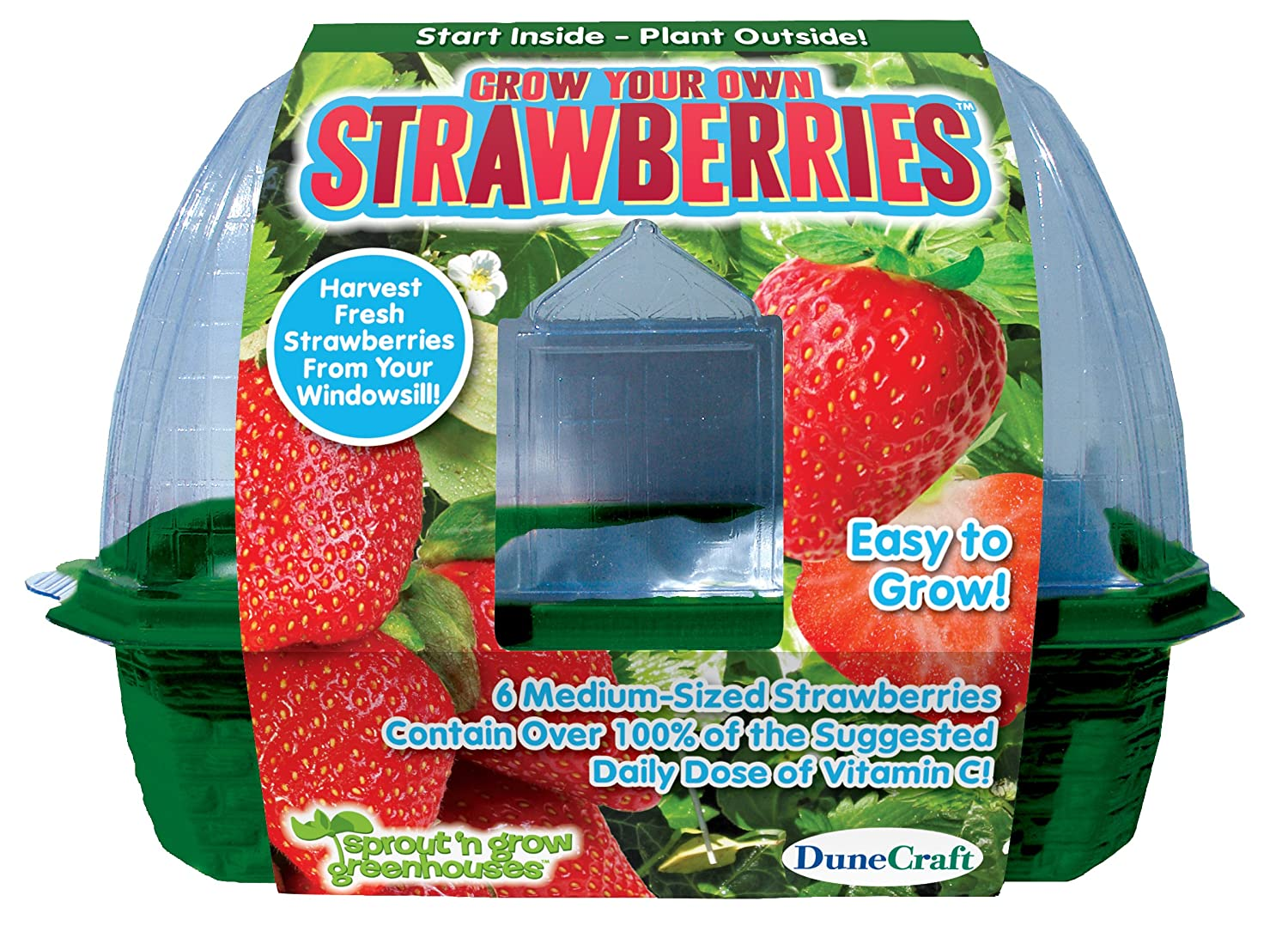 Amazon.com: DuneCraft Sprout \'n Grow Greenhouses Strawberries: Toys ...