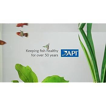 API TAP WATER CONDITIONER Aquarium Water Conditioner