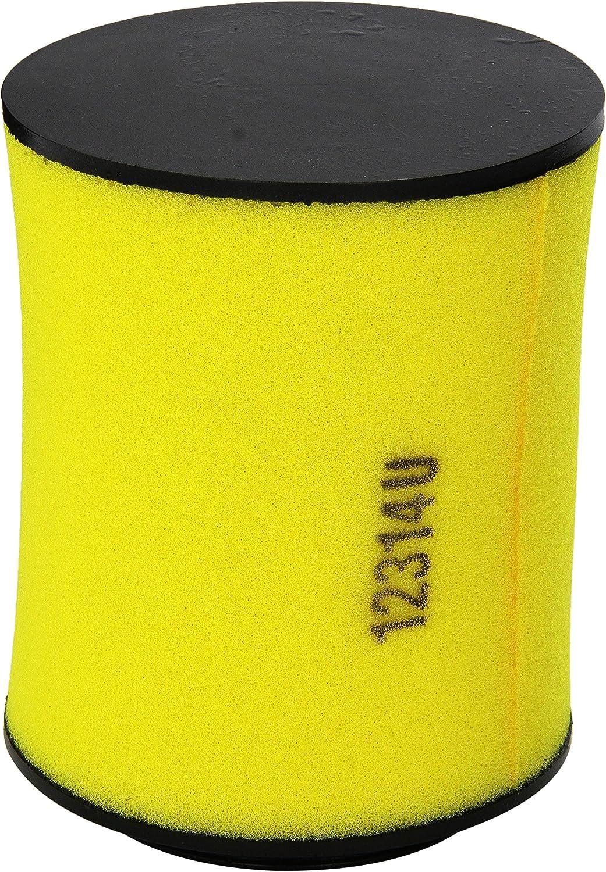 Honda 17254-HP5-600 Air Filter