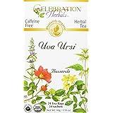 CELEBRATION HERBALS Uva Ursi Tea Organic 24 Bag, 0.02 Pound