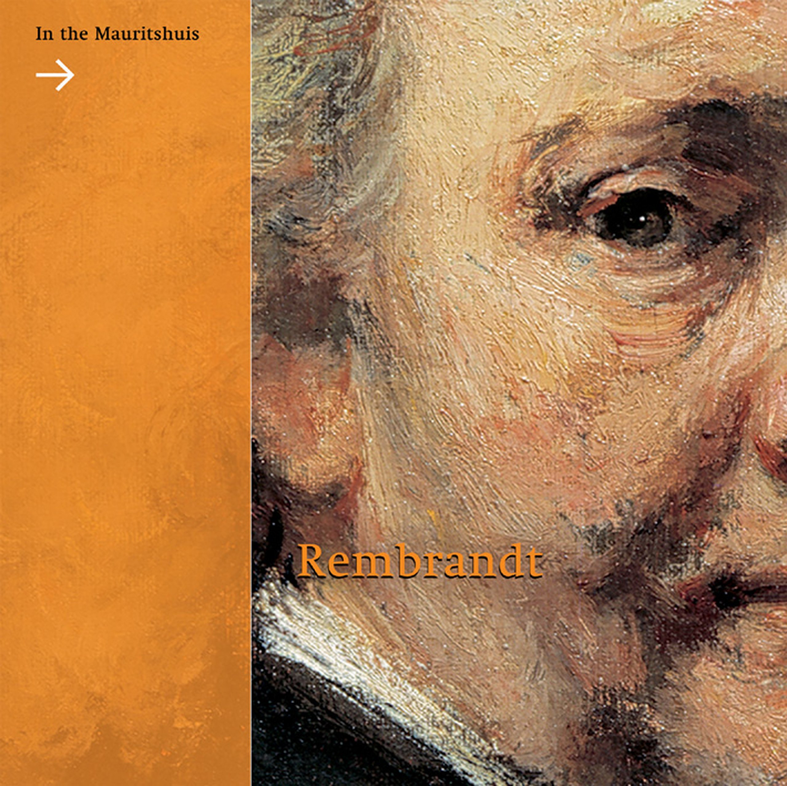 Download Rembrandt: In the Mauritshuis PDF
