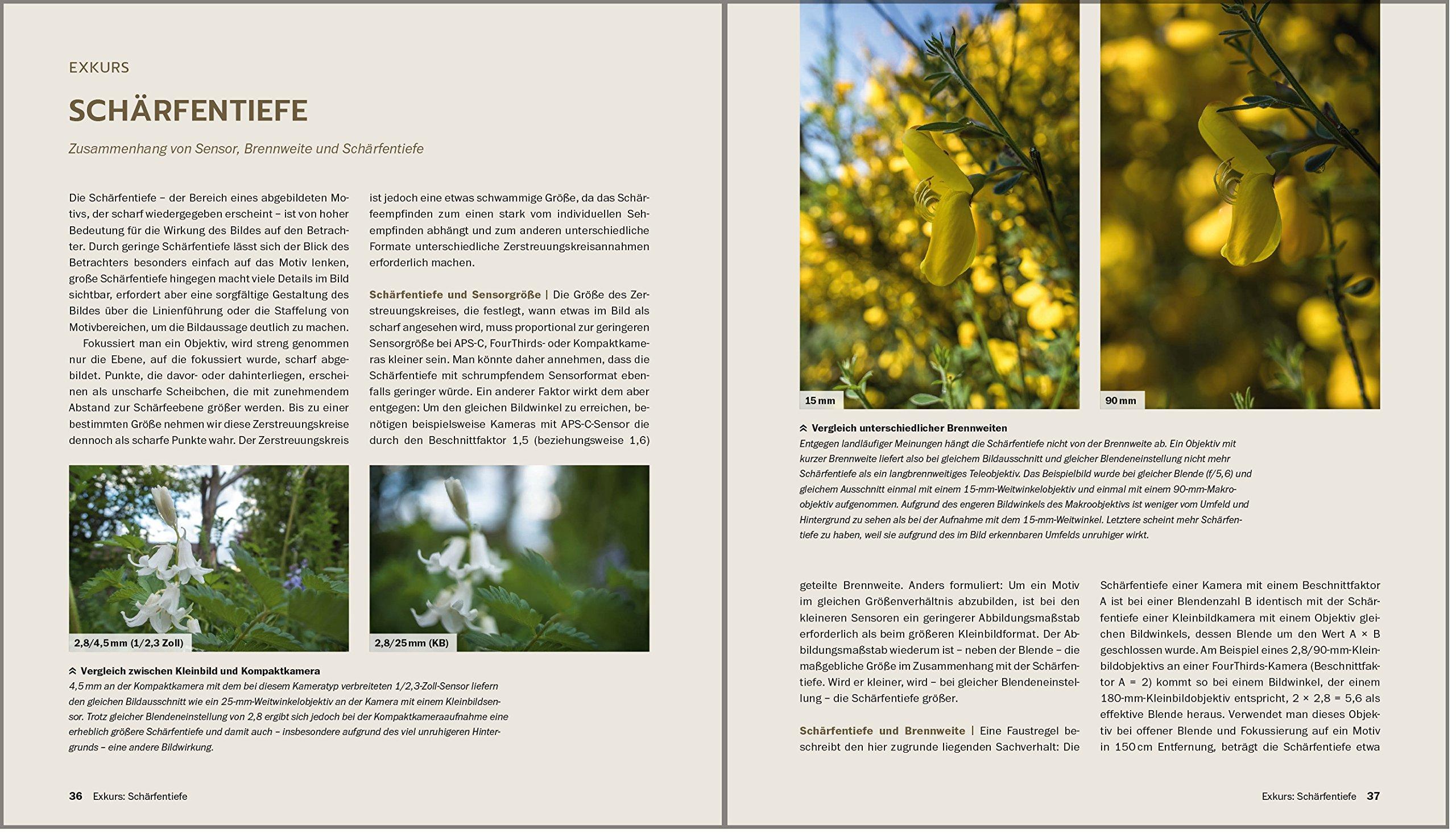 Naturfotografie Die Große Fotoschule Natur Landschaft Makro Und