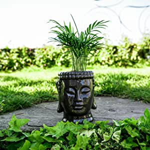 Concretelab&co Maceta de cerámica esmaltada con cabeza de Buda para jardín, interior, exterior, flor Zen: Amazon.es: Jardín