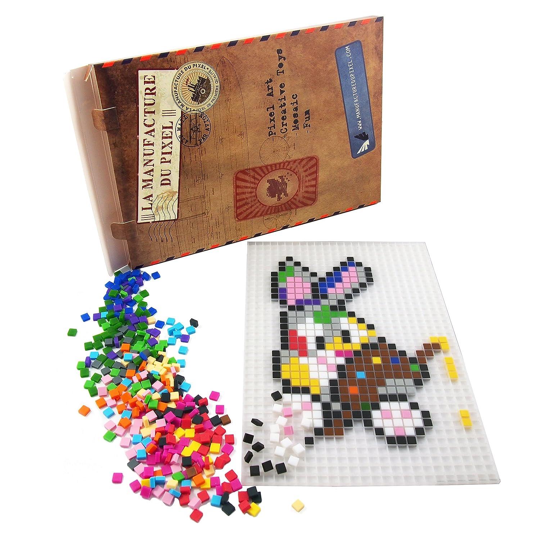 La Manufacture du Pixel - Kit Tapis et 900 Pixels à insérer (Noir) - Pixel Art, Loisir Créatif, Mosaïque, Fun ! - Créez à l'infini Tout l'art Qui Vous Ressemble Loisir Créatif Mosaïque