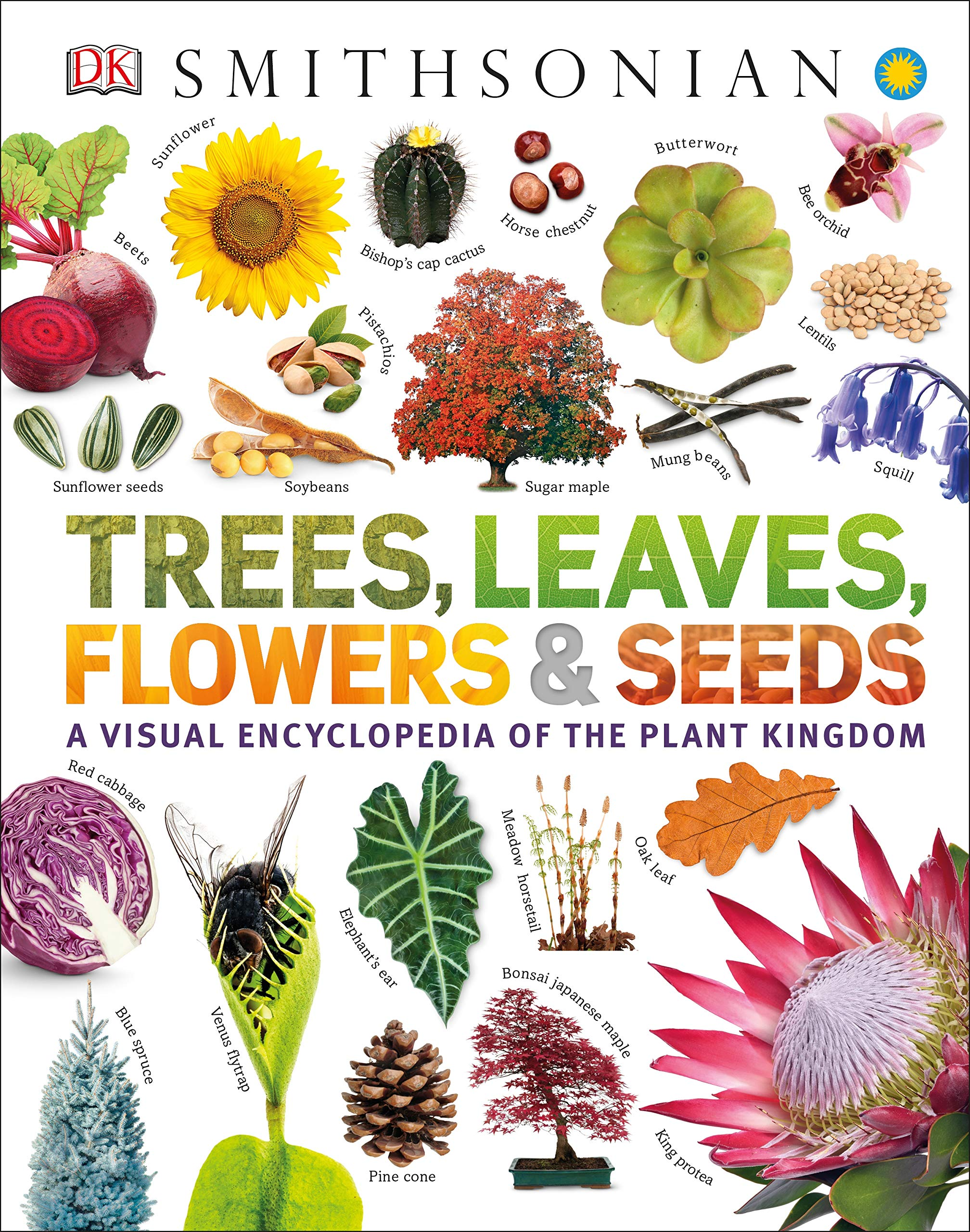 Trees, Leaves, Flowers and Seeds: A Visual Encyclopedia of the Plant Kingdom (Smithsonian) by DK Children