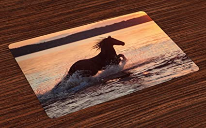 Ambesonne Equestrian Place Mats Set Of 4 Horse Sea At Sunset Time Horizon Speed Exotic