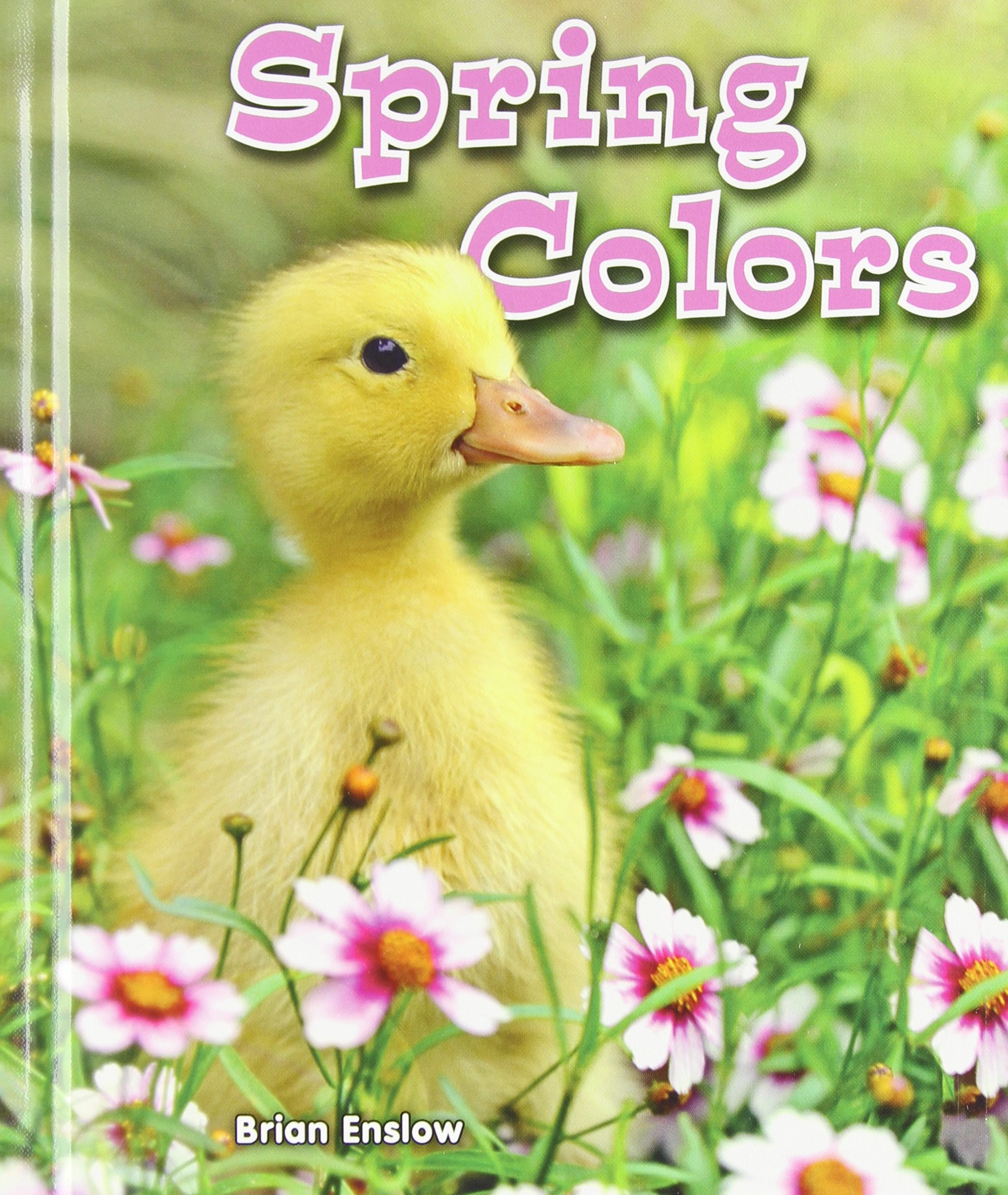 Download Spring Colors (All About Colors of the Seasons) pdf