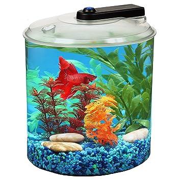 amazon com aquascene 1 5 gallon 360 fish tank with led lighting