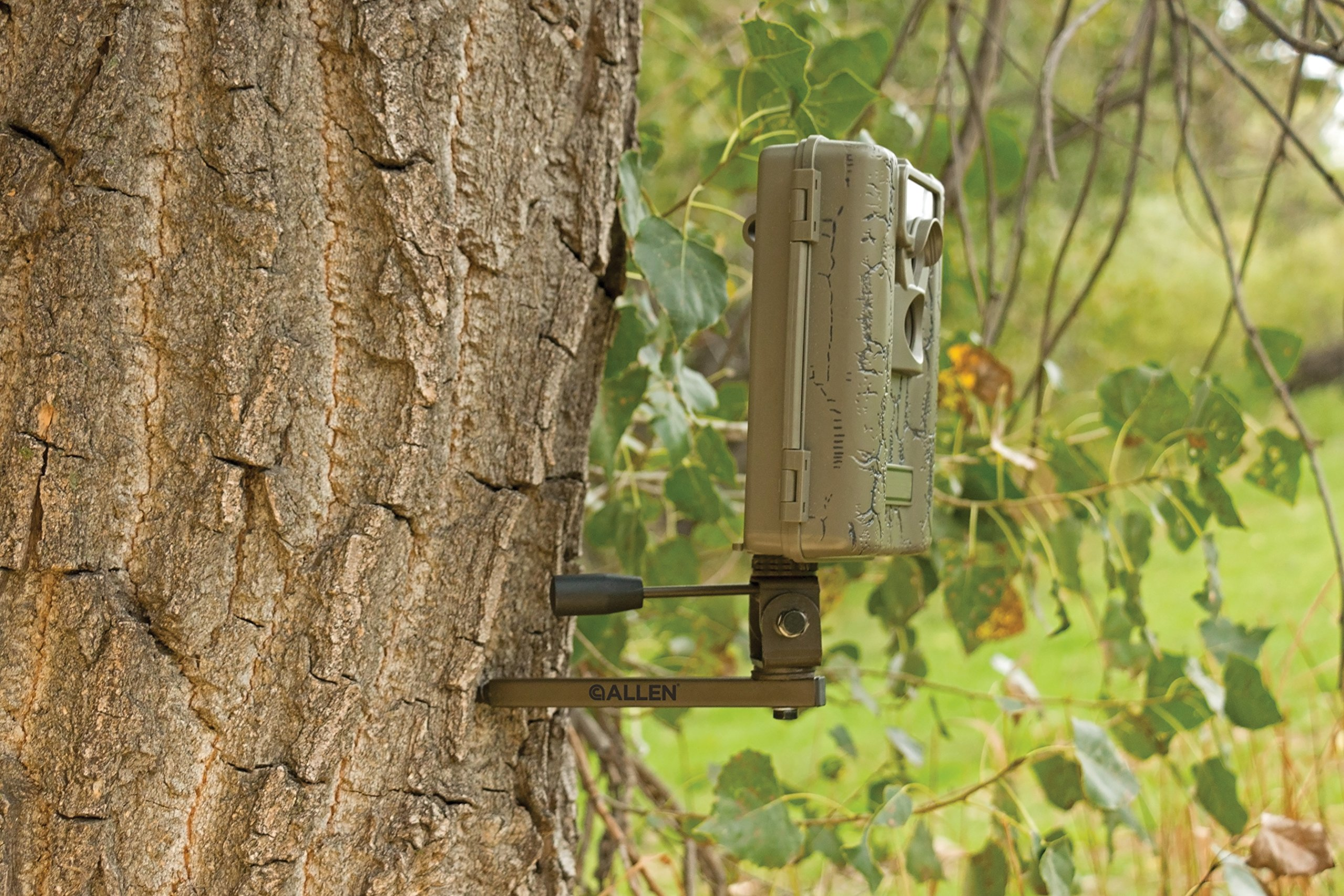 Allen Anywhere Tree Mount Trail Camera Holder, Olive
