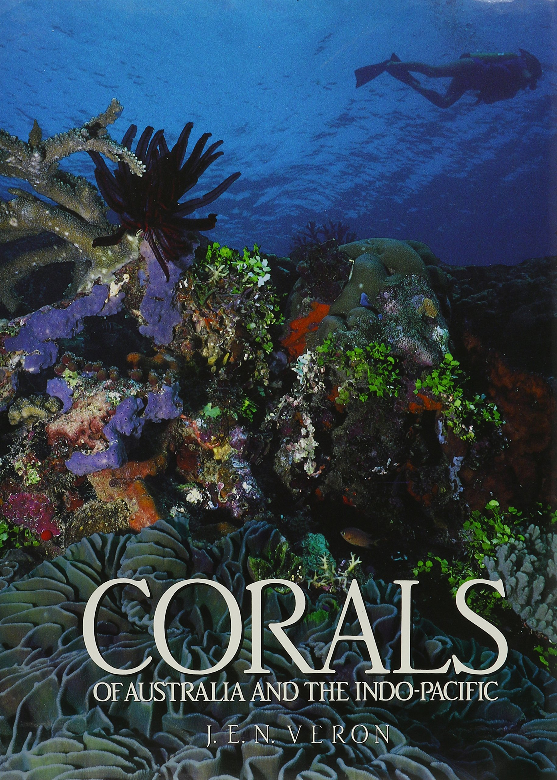 Corals of Australia and the Indo-Pacific: Amazon.es: Veron ...