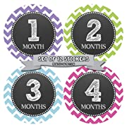 Months in Motion 071 Monthly Baby Stickers Baby Girl Month 1-12 Milestone Age