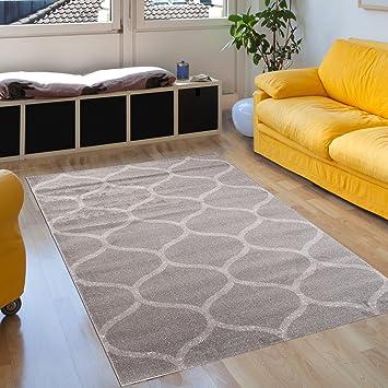 Amazon.de: Teppich Wohnzimmer Grau 120 x 170 cm Designer Teppich ...