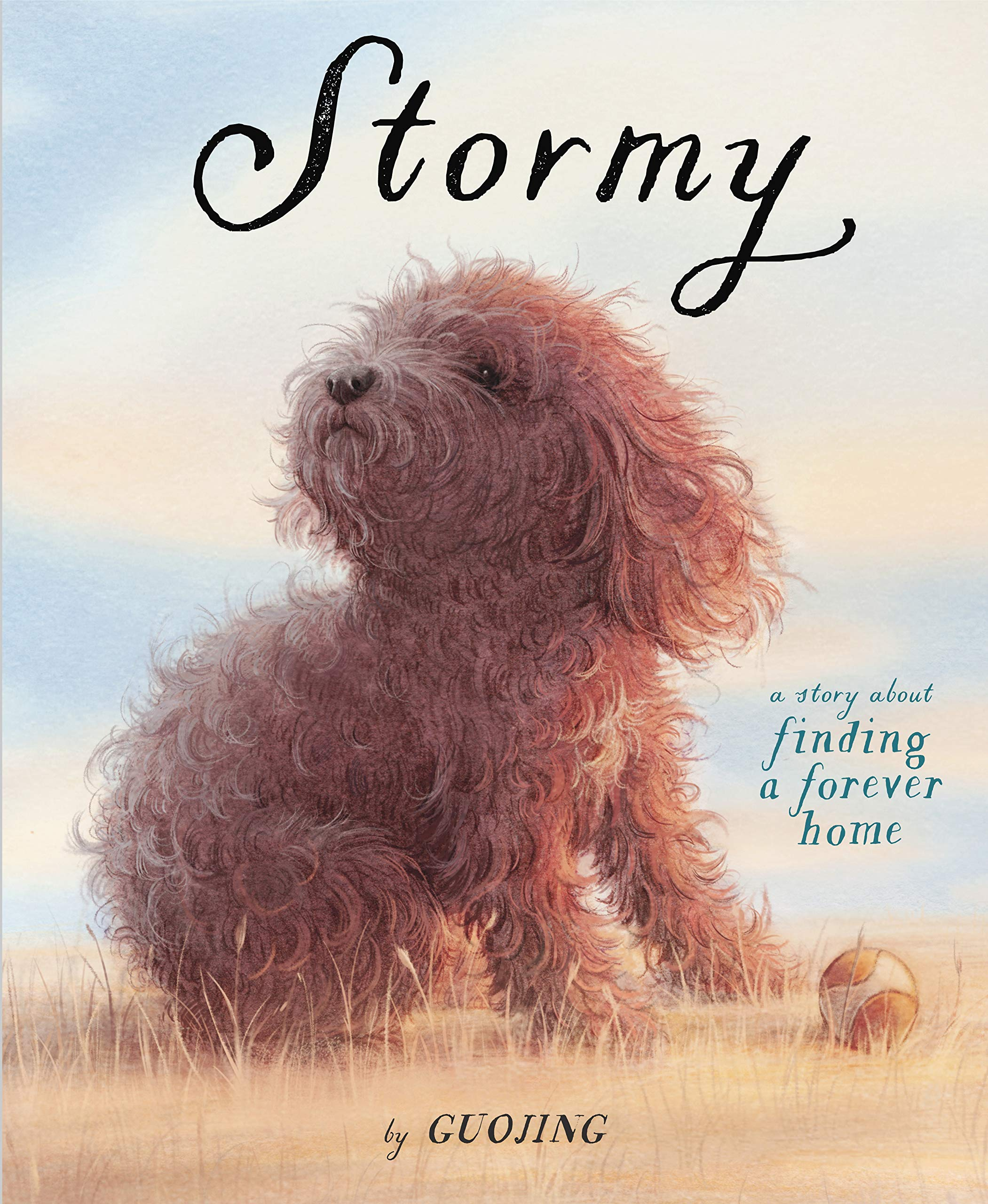 Image result for stormy book""