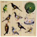 BabyGo Wooden Birds Identification Teaching Tray with Knobs (30cm x 30cm) (Multi Color)
