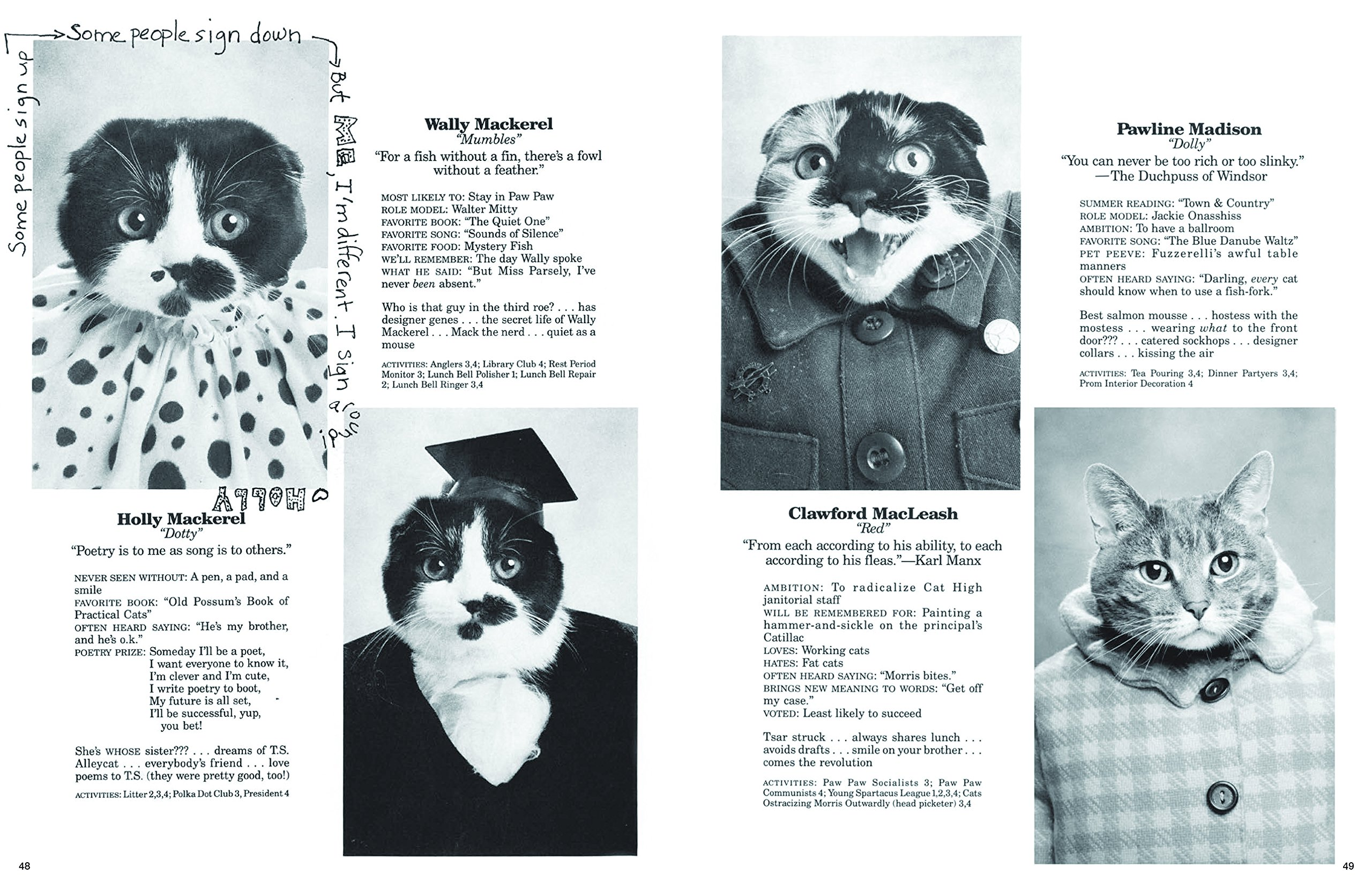 Image result for cat high yearbook