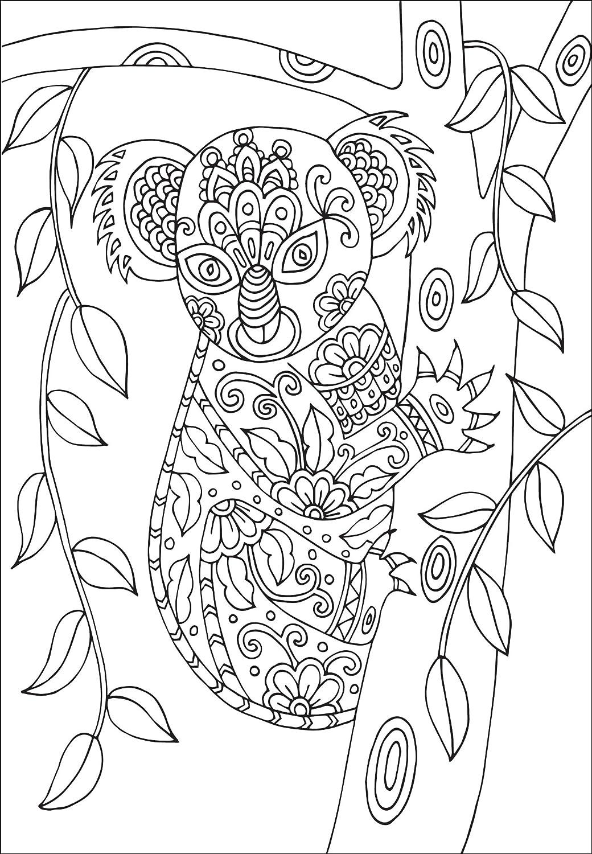 Coloriage Carte Anniversaire Adulte.12 Adulte Ou Pour Enfant Animal Wildlife Vierge De Coloriage