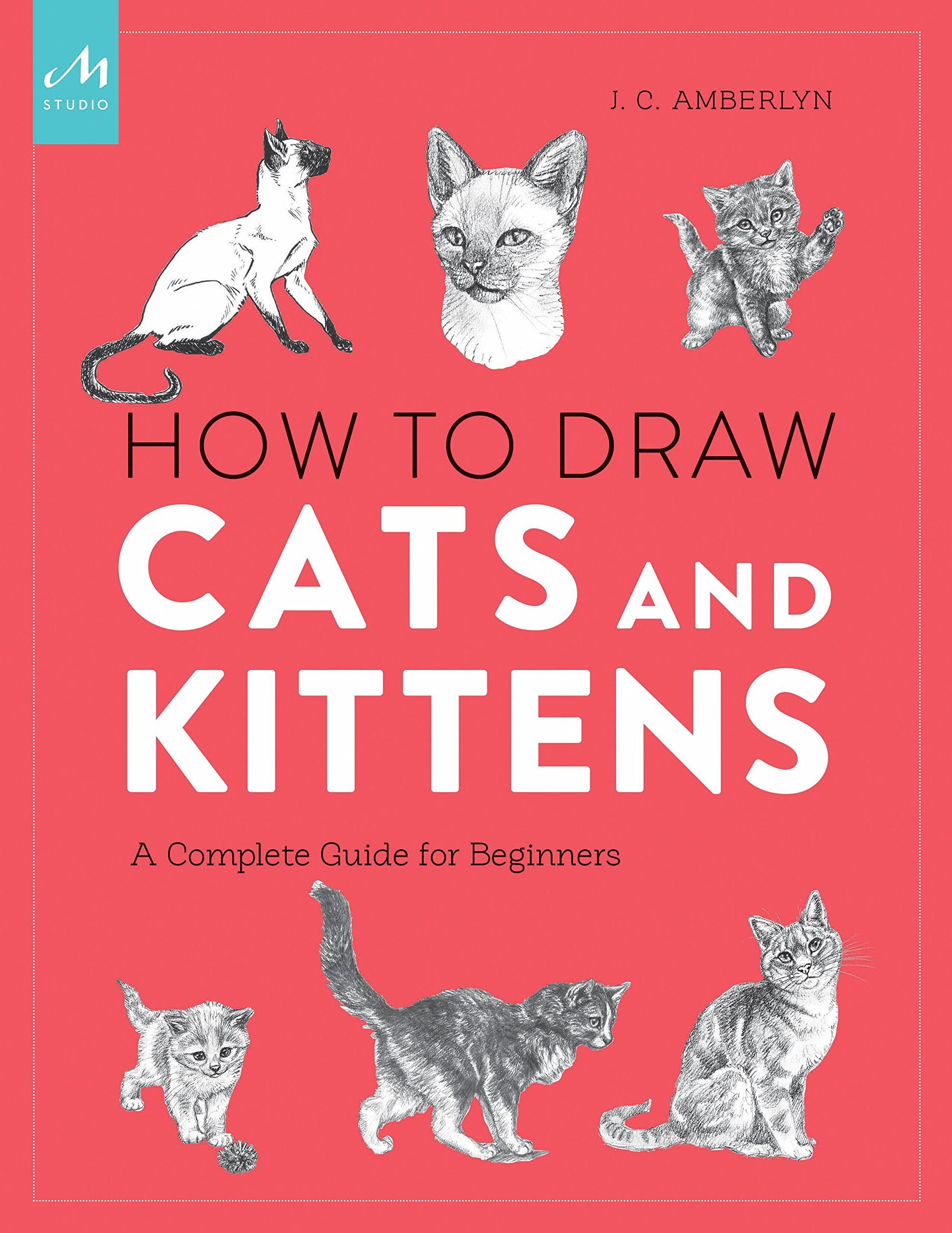 How Draw Cats Kittens Beginners
