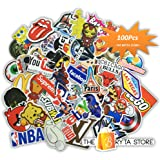 Bryta 100 PREMIUM Stickers Decals Vinyls | Pack of The Best Selling Cool Sticker | Perfect To Graffiti Your Laptop, Macbook, Skateboard, Luggage, Car, Bumper, Bike, Hard Hat | The Store