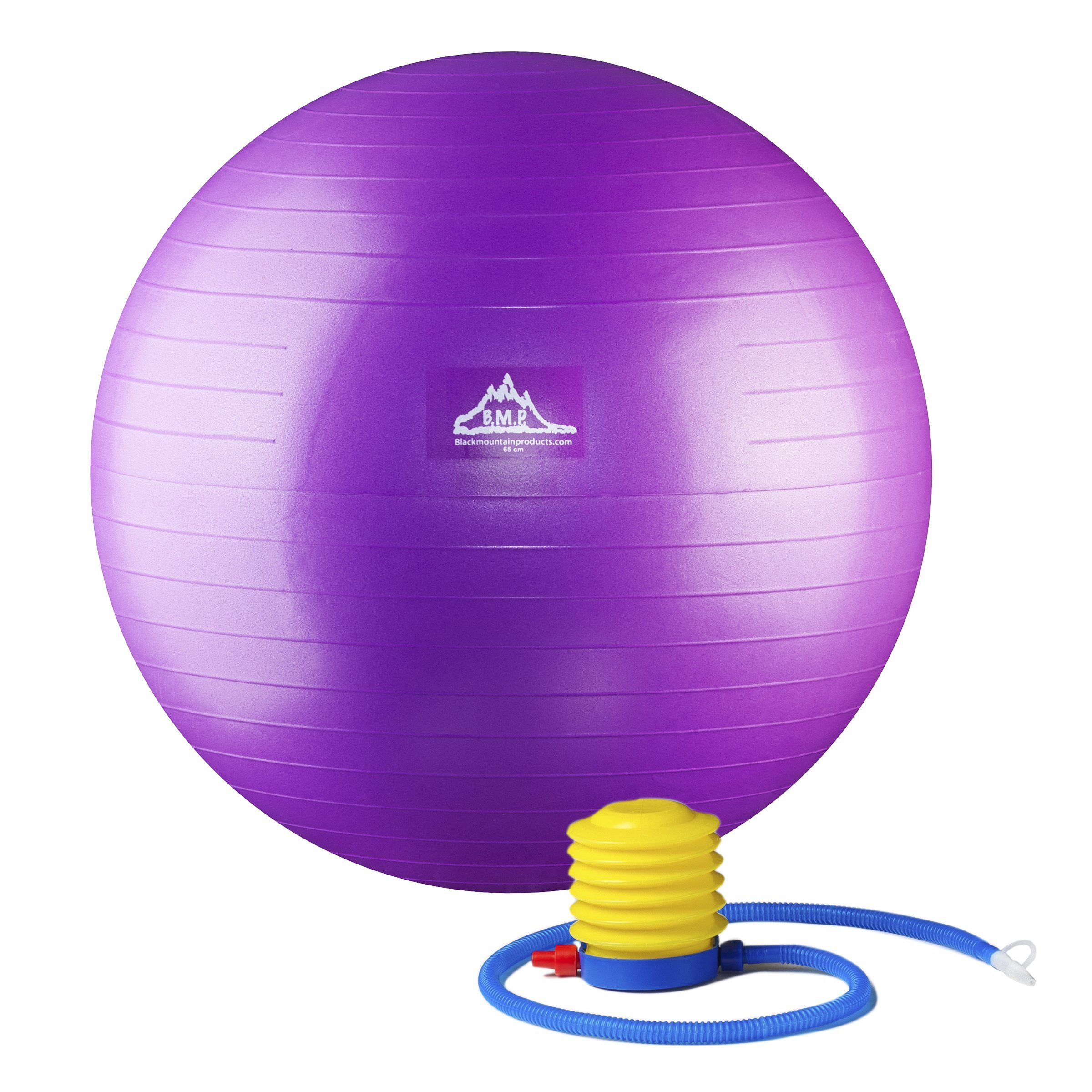 Black Mountain Products Professional Grade Stability Ball, Purple, 55 cm
