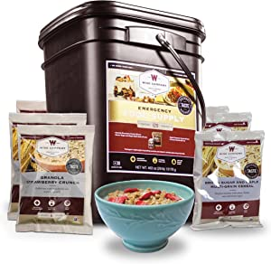 Wise Company, Emergency Food Supply, Freeze-Dried Breakfast Variety, 120 Servings