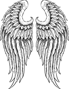 EW Designs Detailed Angel Wings with Feathers Black White Vinyl Decal Bumper Sticker Two in One Pack (4 Inches Tall)
