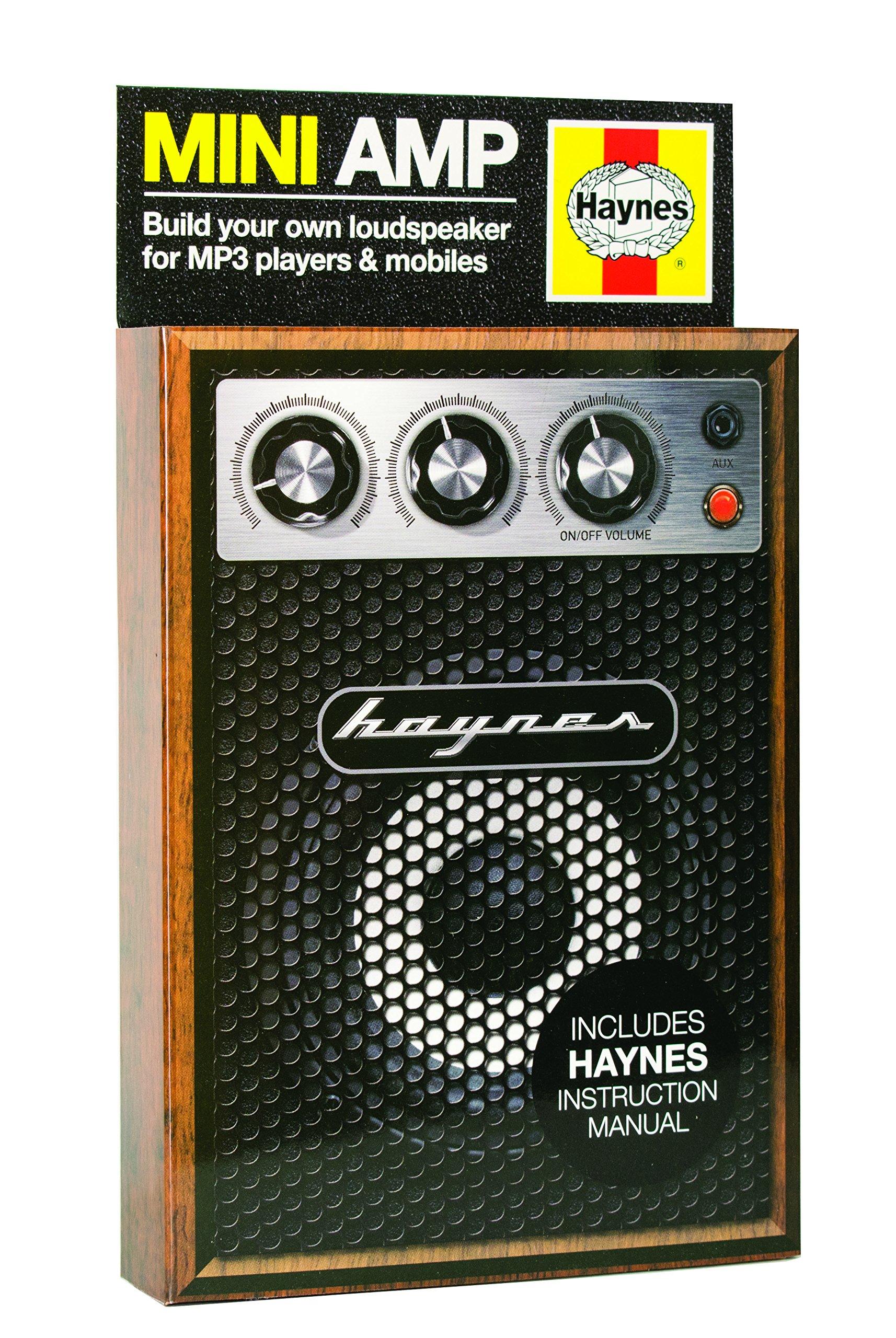 Haynes Mini Amp Kit by Haynes