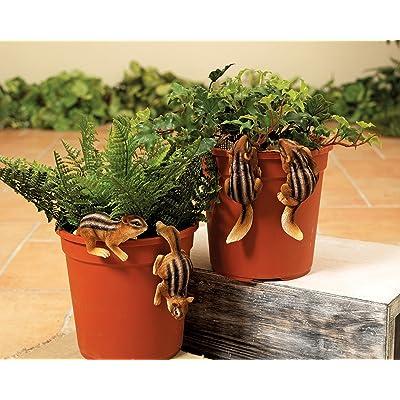 Mission Gallery Chubby Chipmunks Resin Garden Pot Clingers - Set of 4: Garden & Outdoor