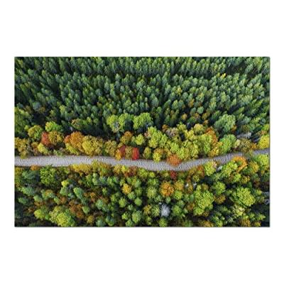 Aerial View Latvian Autumn Nature, Forest & Road 9002848 (Premium 1000 Piece Jigsaw Puzzle for Adults, 20x30, Made in USA!): Toys & Games