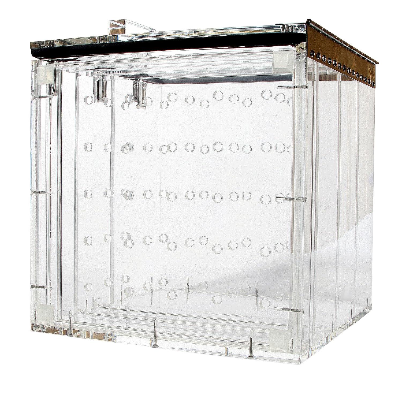 Amazon.com: Nalgene 5317 acrílico desecador Gabinete con ...
