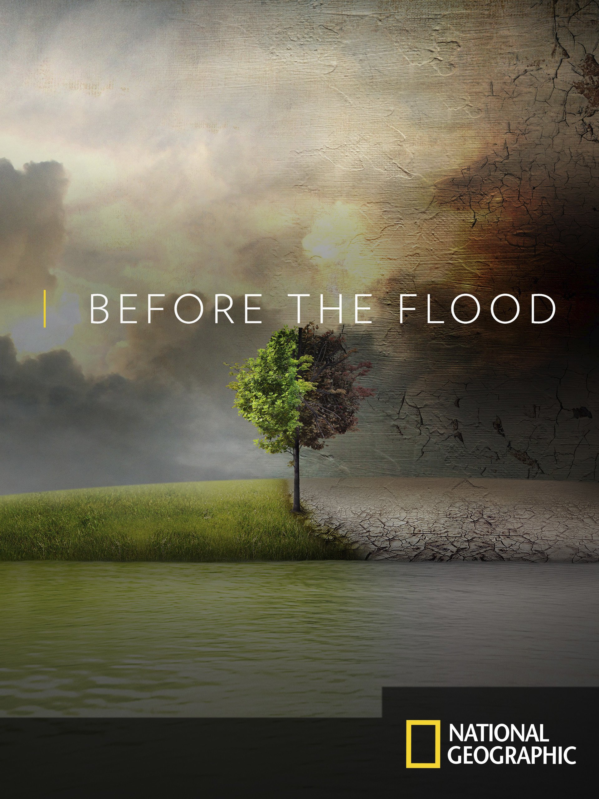 Image result for before the flood