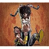 SHAKA PONK-GEEKS ON STAGE DVD