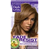 SoftSheen-Carson Dark and Lovely Fade Resist Rich Conditioning Color, Chestnut Blonde 380