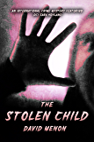 The Stolen Child (DCI Sara Hoyland Crime Mystery Book 2)