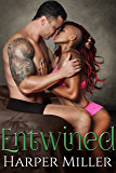 Entwined (The Kinky Connect Chronicles Book 3)