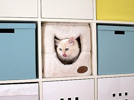 Cama de gato