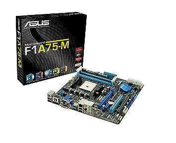 ASUS F1A75-M AMD Hudson D3 Socket FM1 Micro ATX - Placa Base (1066