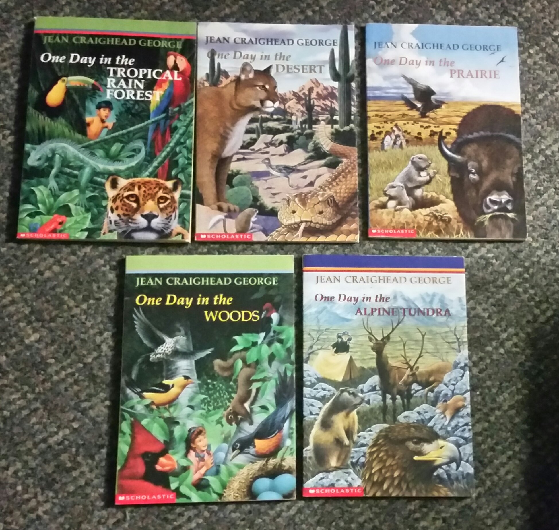 5 Books in One Day Set (One Day in the Woods, ... Prairie, ... Alpine  Tundra, ...Desert, ... Tropical Rain Forest): Jean Craighead George:  Amazon.com: Books