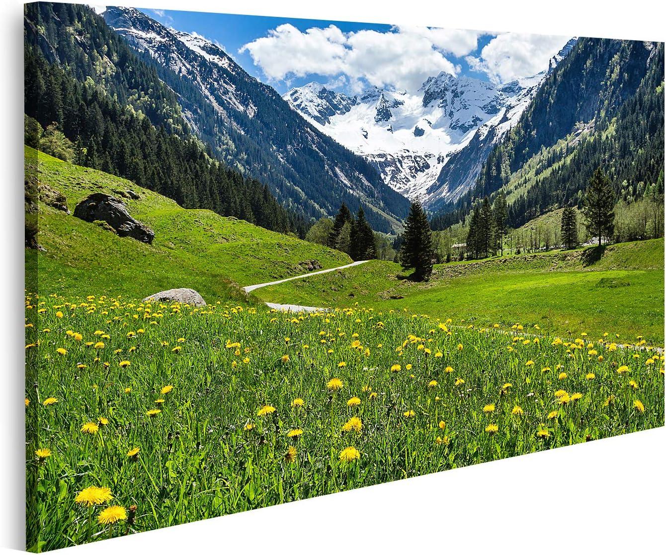 Cuadro en lienzo Increíble paisaje alpino de primavera y verano con flores verdes del prado y un pico nevado en el fondo Tirol Stillup Valley Austria Cuadros Modernos Decoracion Impresión Salon