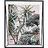 AmazonBasics Wedge Floating Photo Frame for 8 x 10 Inch Photos - Slim Frame, Black