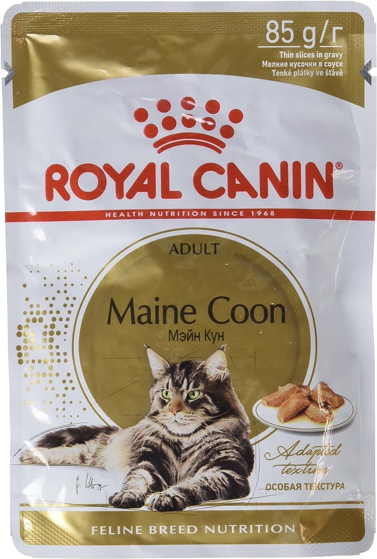 Royal Canin Feline Adult Maine Coon Pouch - Caja 12X85Gr 1020 g