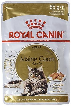 ROYAL CANIN Maine Coon Adult Comida para Gatos - Paquete de 12 x 85 gr - Total: 1020 gr: Amazon.es: Productos para mascotas