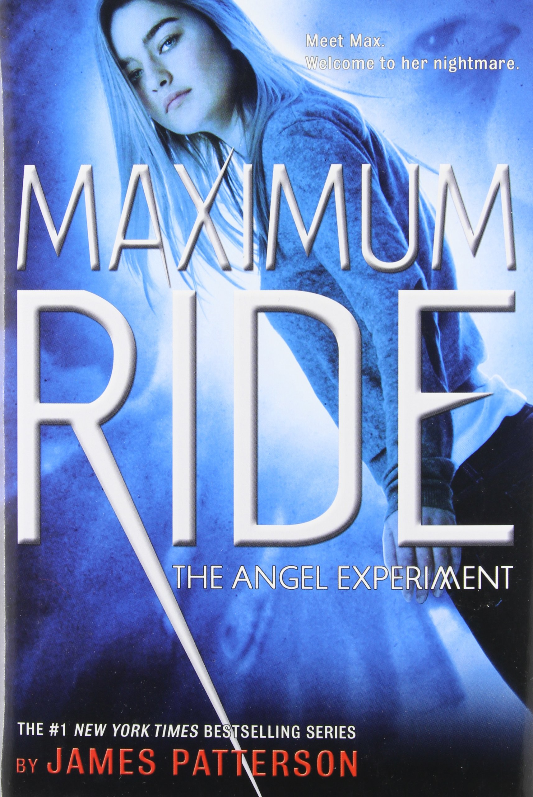 Image result for maximum ride the angel