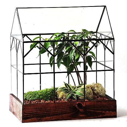 Amazon Com Large Glass Terrarium Handmade