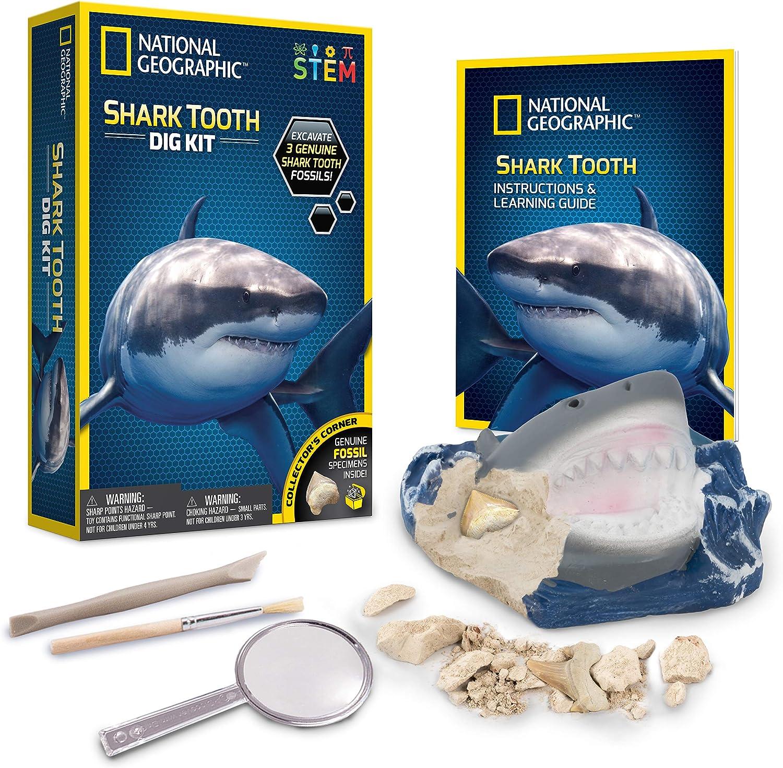 National Geographic- Excava Y Descubre - Diente De Tiburón, Multicolor (60062)